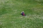 VELDIG gøy å leke i gresset!